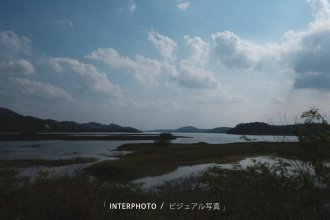 interphoto_15501607152251540041751763701451.jpg